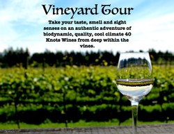 40 Knots Guided Vineyard Tour for two