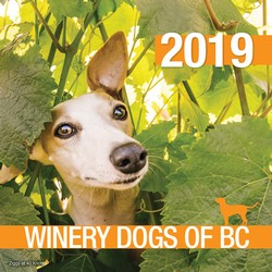 2019 BC Winery Dogs Calendar